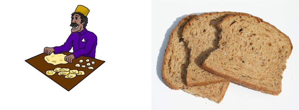 Comparison of Roti versus Brown Bread Myth